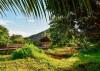 Best Hawaiian Islands to visit during Summer